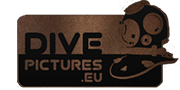 Logo Dive Pictures.eu